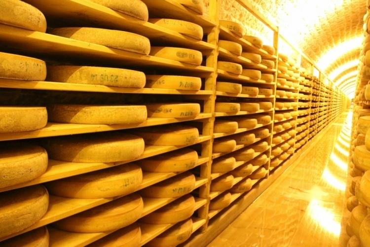 Une visite de cave d 39 affinage comt au fort des rousses - Cave affinage fromage electrique ...