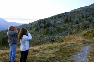 été dans le Val d'Hérens : Observation faune sauvage