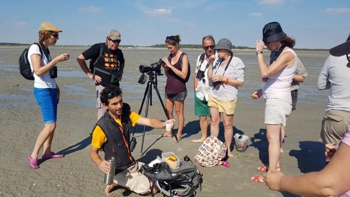 Découvrir la Baie de Somme : Dégustation tisane et gâteau battu
