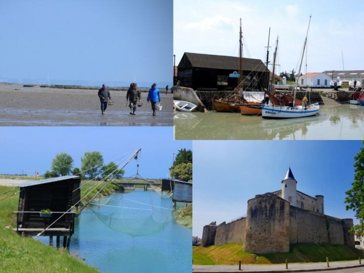 Que faire en Vendée : Noirmoutier