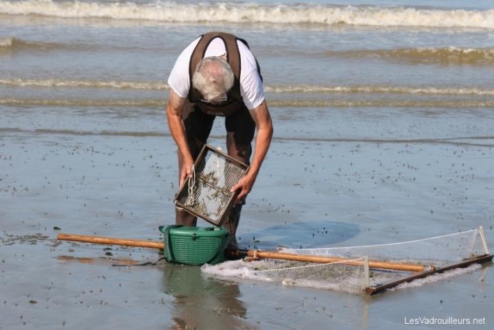 Pêcher les crevettes