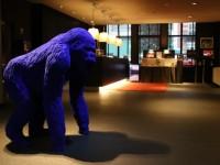 Blue-Kong-à-laccueil