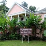 Que voir en Jamaique ? 5 idées de visites typiques à réaliser