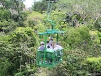 Téléphérique-au-dessus-de-la-forêt-tropicale