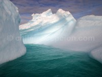 Croisière-en-Antarctique