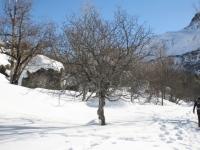 Paysage-dhiver-à-la-montagne