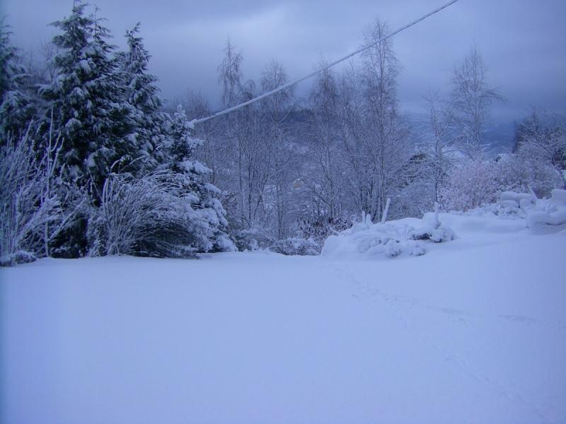Alsace sous la neige