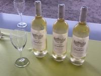 Bouteilles de Bordeaux blanc