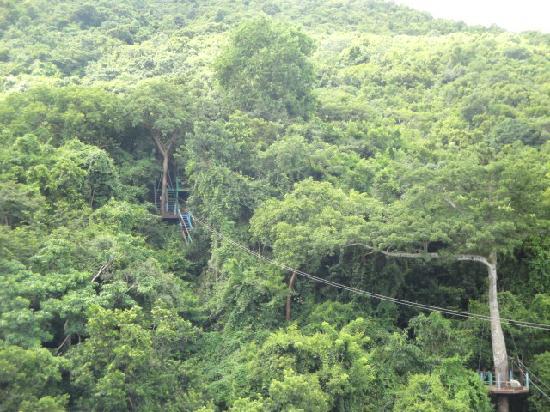 ATG29 - Antigua