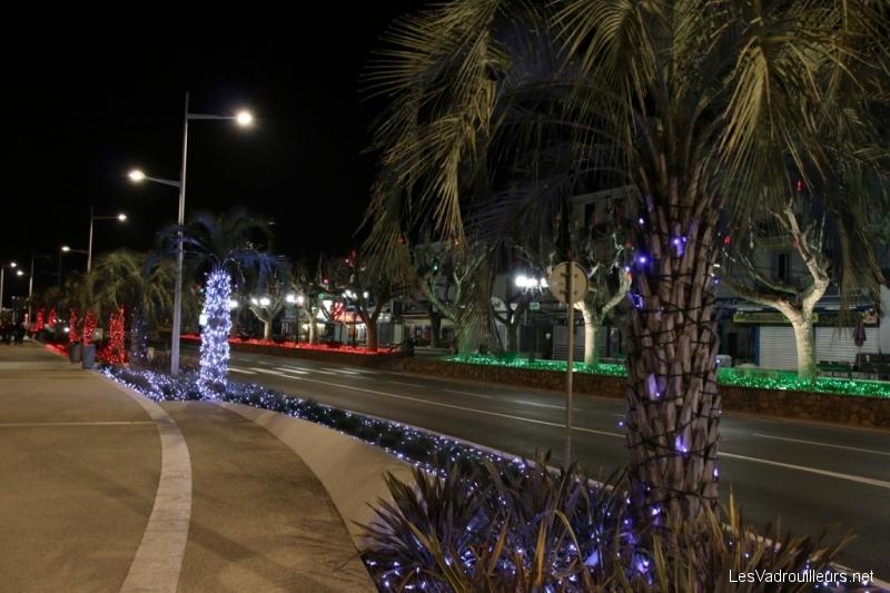 Palmiers illuminés le soir