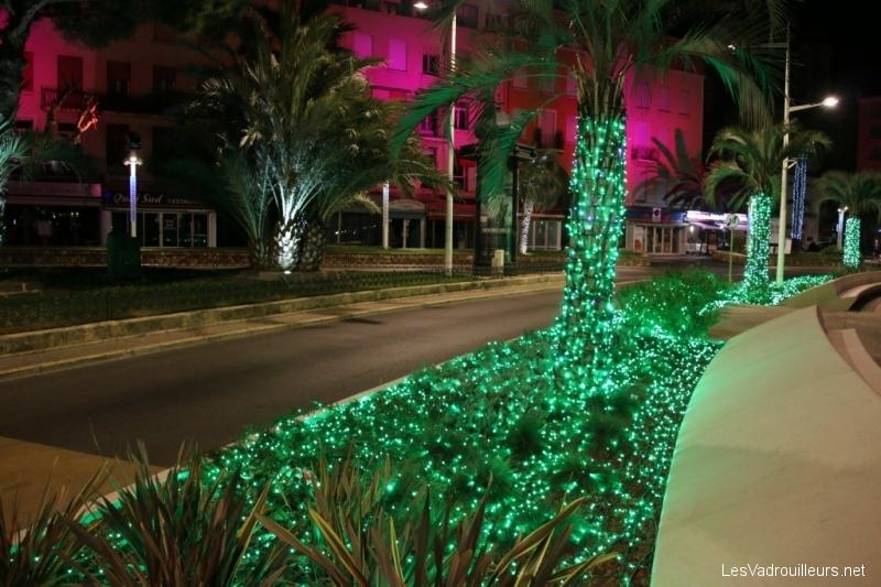 Tapis de lumière aux palmiers
