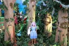 Scène de la Forêt enchantée