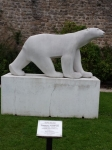 Ours blanc de Saulieu