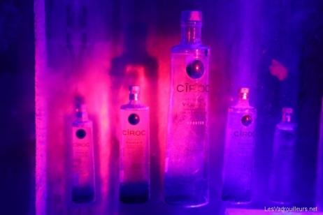 Bouteilles de Vodka dans le décor