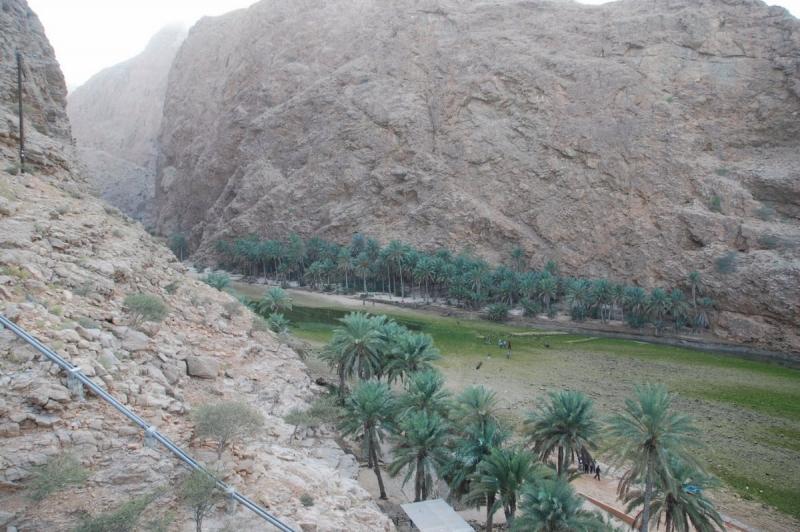 Interview Solène pour Oman