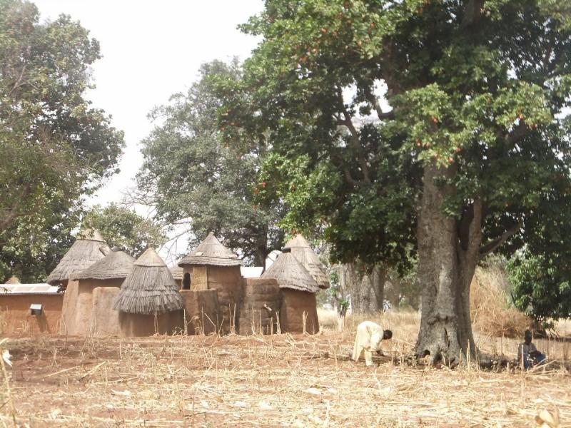 Voyage au Bénin