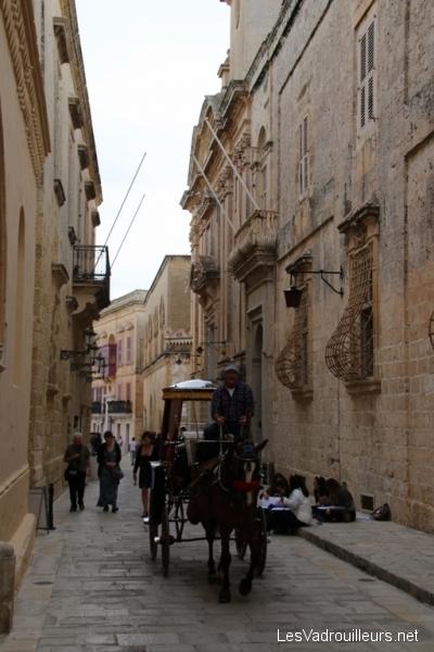 Balade en calèche dans Mdina
