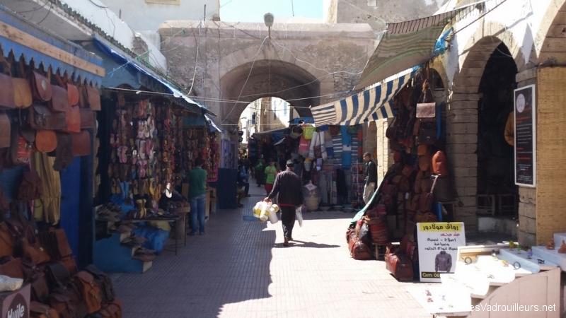 Excursion à Essaouira au Maroc