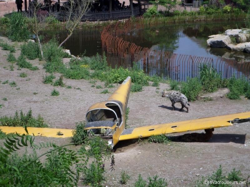 Parc animalier Pairi Daiza