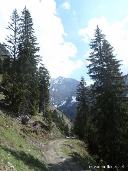 Randonnée en vallée d'Abondance