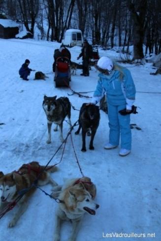 Caresses aux chiens en fin de balade