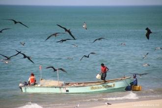 Des Pêcheurs de Farallon