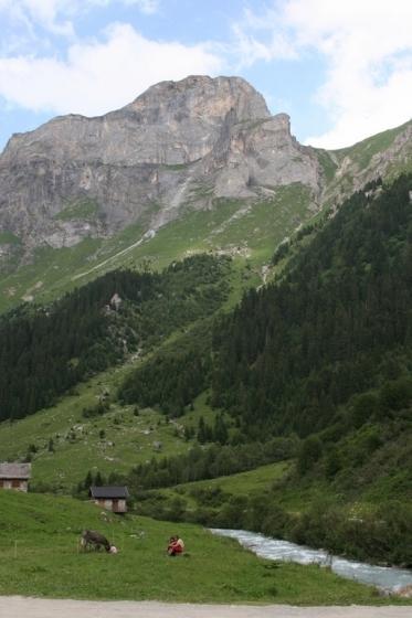 Paysage d'été à la montagne