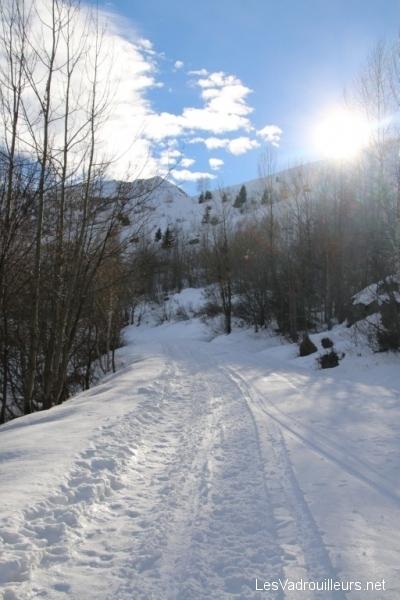 Paysage de montagne enneigé