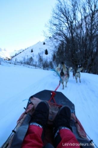 Balade en chiens de traineau