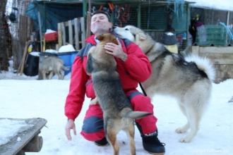 Calin avec les chiens