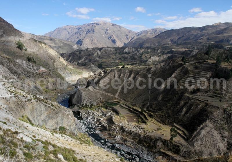 Canyon du Colca