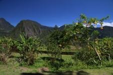 La réunion - île de beauté exotique