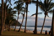 Plage Grand Anse de la Réunion
