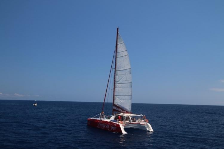Rencontre d'un catamaran
