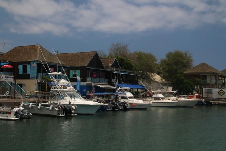 Le Port de Saint-Gilles-les-Bains