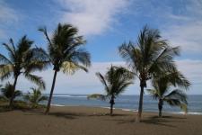 Arrivée à la plage d'Etang Salé