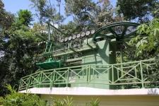 Téléphérique en forêt tropicale