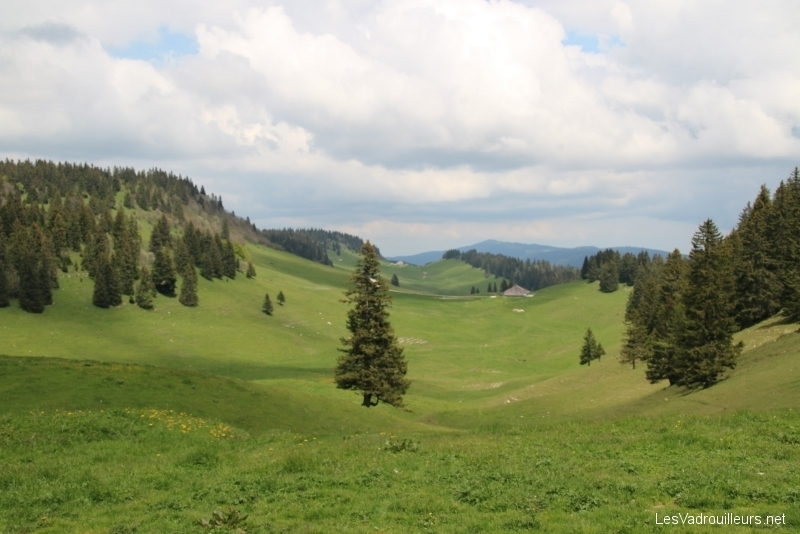 Panorama sur une plaine