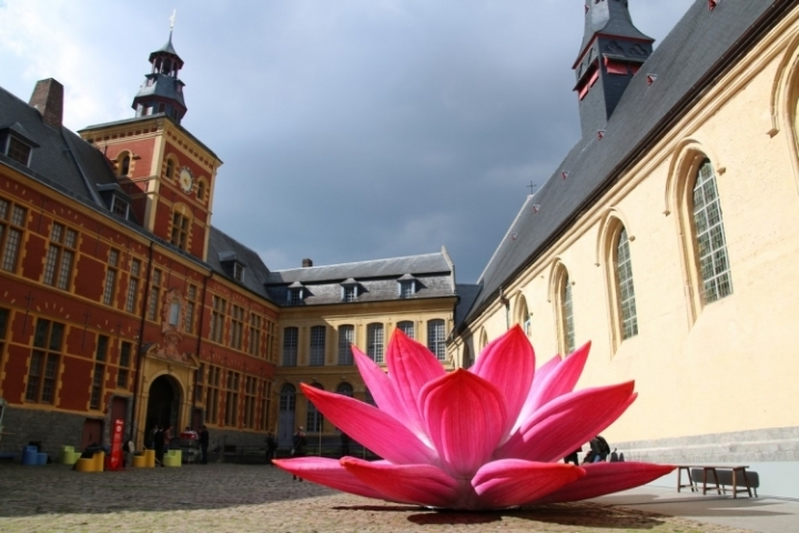 Fleur de Lotus à l'Hospice Comtesse