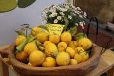 Menton : cité du citron