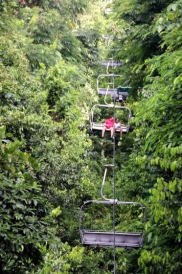 Que faire en Jamaique ? Sky Explorer Mystic Mountain