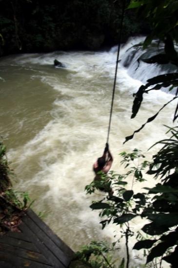 Que faire en Jamaique ? Se prendre pour Tarzan ?