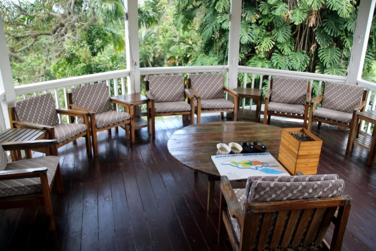 Que visiter en Jamaique ? Craighton Estate House