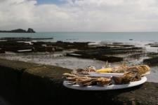 Assiette d\'huîtres à Cancale