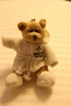 Le petit Teddy