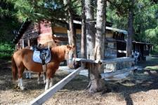 été dans le Val d'Hérens : Ranch Le Caribou