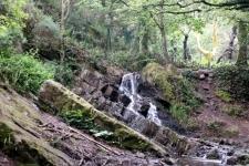 Cascade et arbre d\'or du Val sans Retour