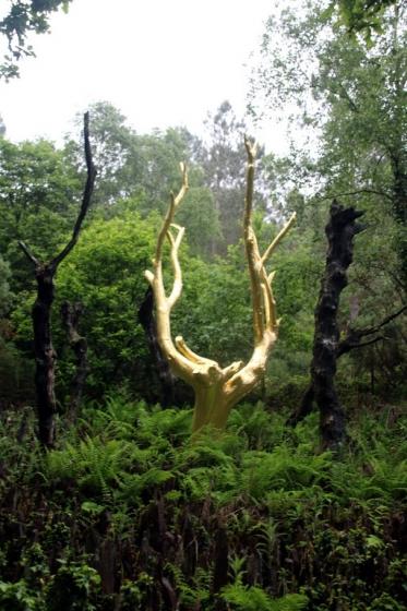 L\'arbre d\'or du Val sans Retour