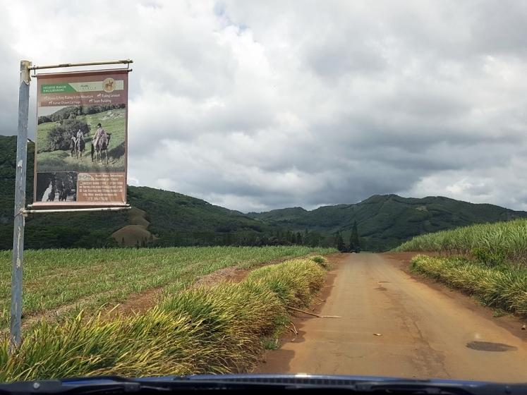Que faire à l'île Maurice : activités Domaine de l'Etoile