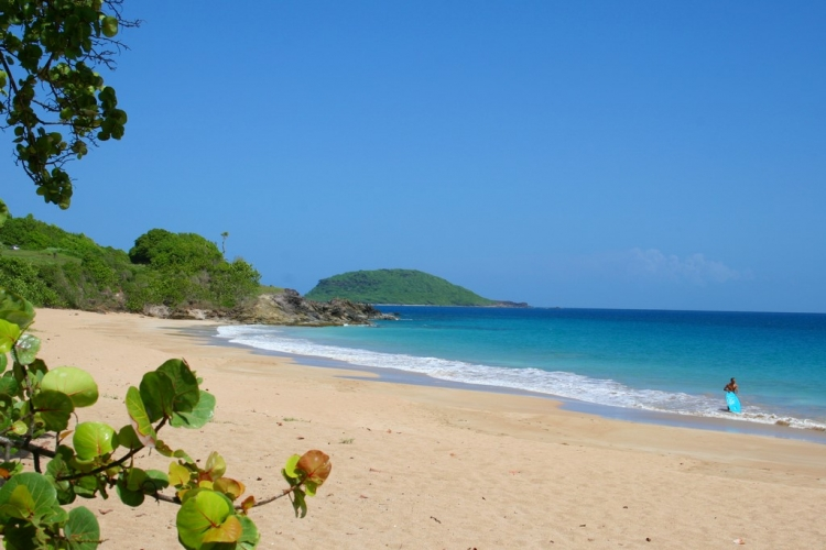 Plage paradisiaque de Grande Anse - Guadeloupe